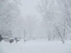 Schnee2014.jpg